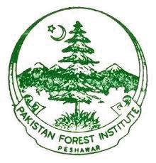 Forest Division Logo