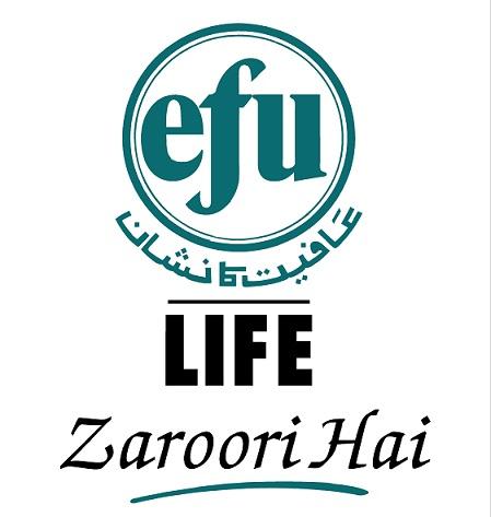 Efu Life Assurance Ltd Logo