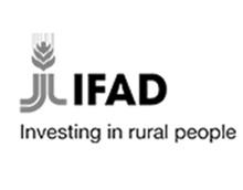 Economic Transformation Intiative Logo