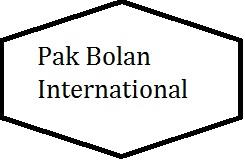 Pak Bolan International Logo
